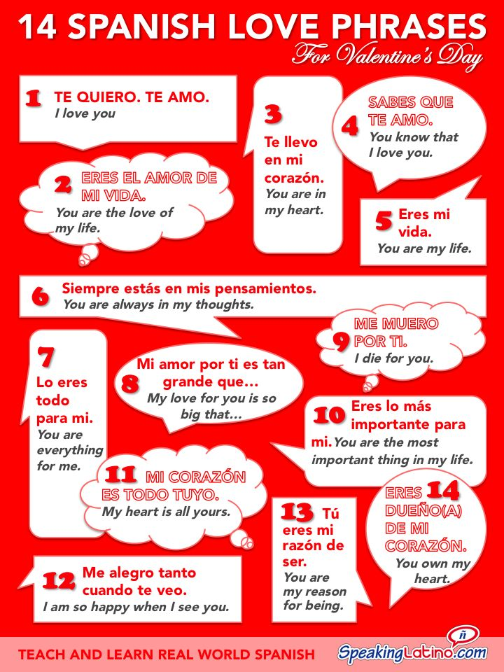 Spanish Love Quotes Custom Spanish Love Phrases For Valentine's Day Infographic SpeedDating